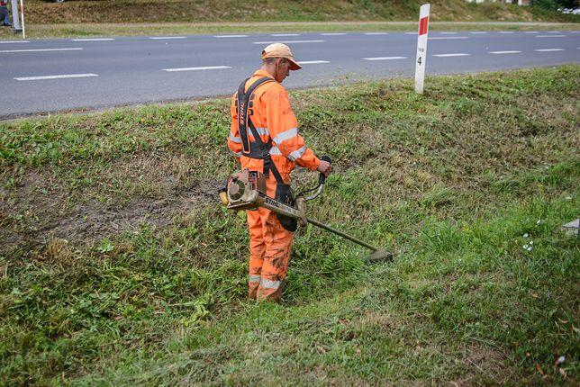 Katowice. Przed defiladą wojskową władze miasta ograniczają zieleń
