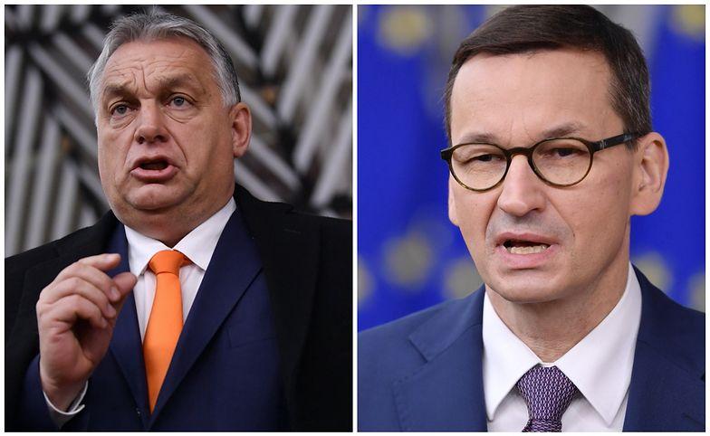 """""""Z tygrysów zostały futerka"""". Niemiecka prasa o Polsce i Węgrzech"""