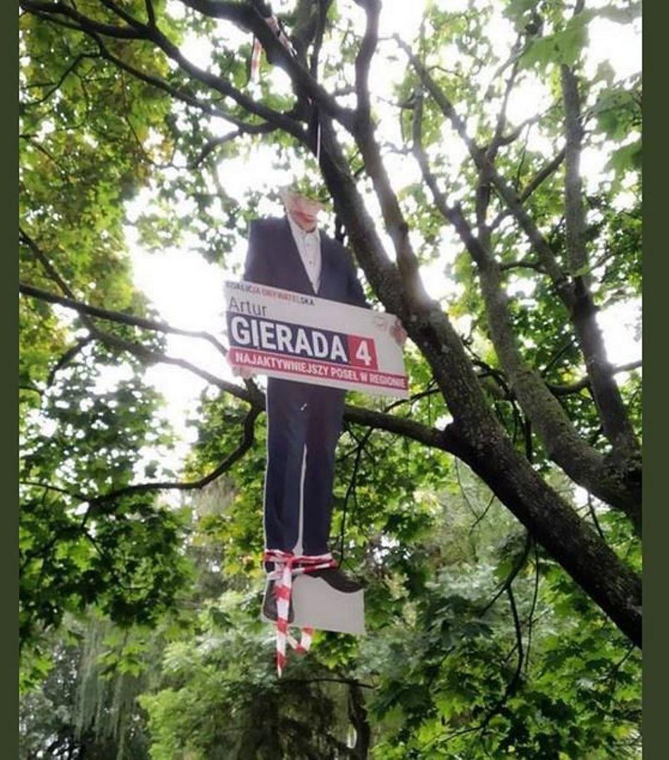 Kielce. Powiesili na drzewie wizerunek Artura Gierady z PO. Prokurator postawił zarzuty dwóm mężczyznom