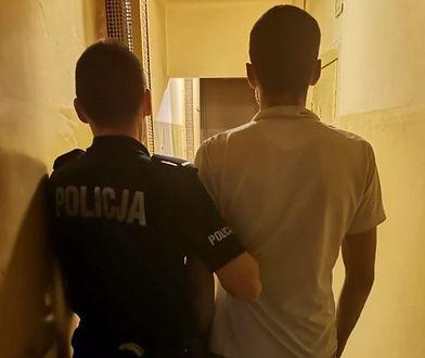 Śląskie. Areszt dla złodzieja akumulatorów. Sprawcę wywęszył Ladir