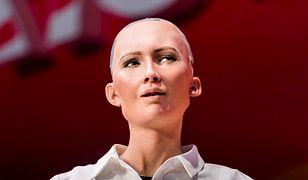 Seks z robotem to nasza przyszłość?