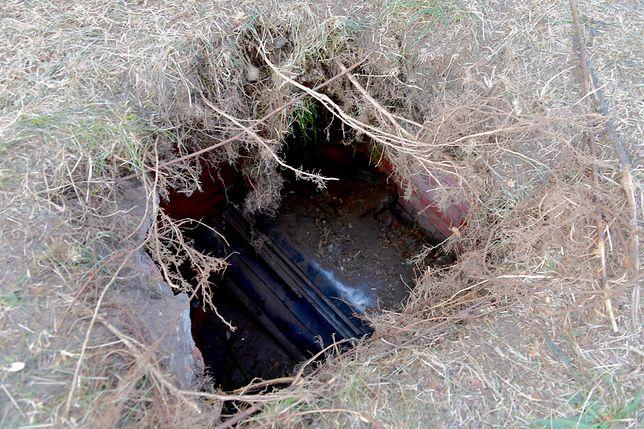 Odkryty w parku grobowiec może mieć ponad 100 lat