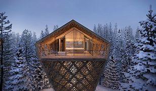 """""""Tree Suites"""" to tylko jeden z wielu fascynujących projektów Petera Pichlera"""