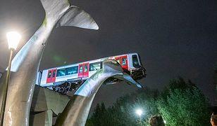 Holandia. Pociąg metra zawisł napłetwie wieloryba