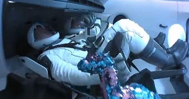 Misja SpaceX i NASA. Pluszowy dinozaur poleciał w kosmos