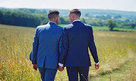 Skrypt seksualny - rodzaje, powstawanie, podział ze względu na płeć, homoseksualizm