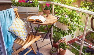 Balkon w bloku może być małym ogrodem