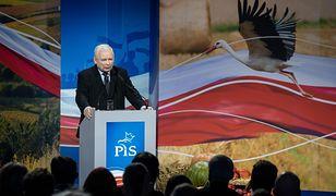 Wybory 2019. Konwencja PiS w Chełmie