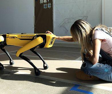 """Polka i słynne roboty z Boston Dynamics. """"Im więcej wiemy, tym trudniej nami manipulować"""""""