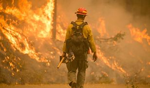 Ogień trawi USA. Skala pożarów poraża