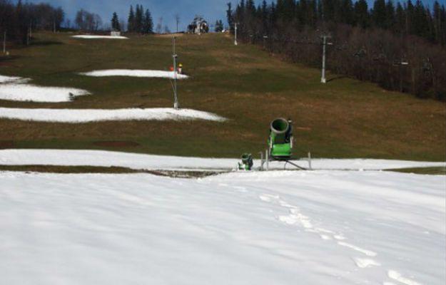 Duży kłopot stacji narciarskich pod Tatrami. Wciąż nie ma śniegu