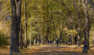 We wtorek wysoką temperaturą będą się cieszyć mieszkańcy wszystkich rejonów Polski