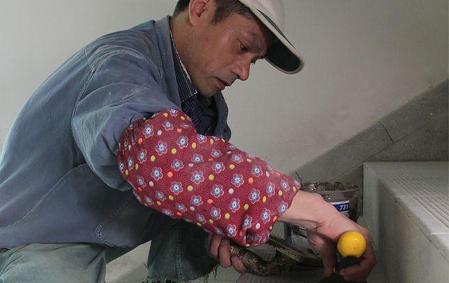 Prawie 500 zezwoleń na pracę dla cudzoziemców w 2012 r.