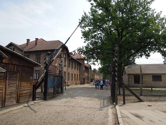 Skandal w Wielkiej Brytanii. Chodzi o antyszczepionkowe ulotki z grafiką obozu Auschwitz w tle