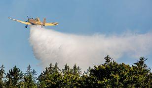Pożar lasu na poligonie w Drawsku Pomorskim objął 100 hektarów