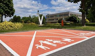 Tychy. Różowe miejsca parkingowe, specjalnie dla kobiet w ciąży i nowych rodziców