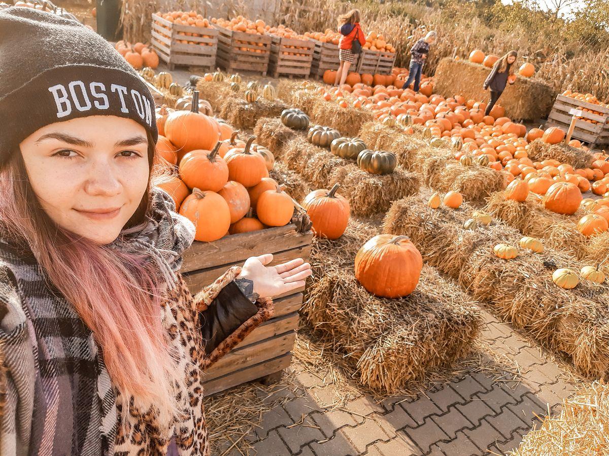 Farma Dyń. Atrakcja dla dzieci i plener fotograficzny dla jesieniar