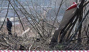 Okoliczności i przyczyny katastrofy smoleńskiej