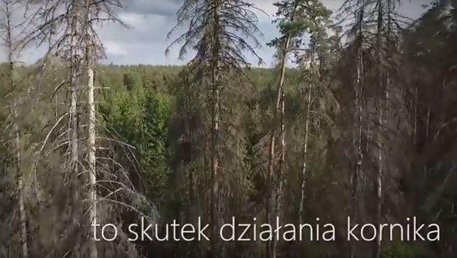 Film Lasów Państwowych wywołuje kontrowersje.