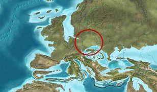 Polska miała ciepłe morze i klimat jak na Florydzie. Wizualizacja mapy kontynentu sprzed 20 mln lat temu