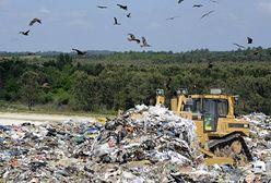 Większość śmieci nadal trafia na wysypiska, mimo że można na nich sporo zarobić