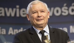 Sondaż TNS Polska. Paweł Lisicki: Polacy pokochali PiS