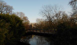 Park Luizy w Mannheim warto odwiedzić o każdej porze roku