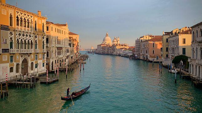 Woda w Wenecji dawno nie była tak czysta