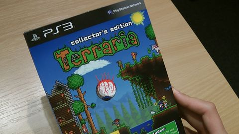 Terraria: miniunboxing miniedycji kolekcjonerskiej