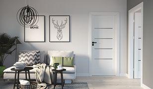 Najpopularniejsze drzwi w domach Polaków. Wybierz klasyczny model dla siebie
