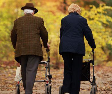 Osoby 60+ podjadą prawie za darmo do lekarza. Ukłon Sosnowca w stronę seniorów