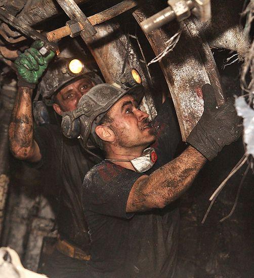 Czarne diamenty Lubelszczyzny - zobacz zdjęcia