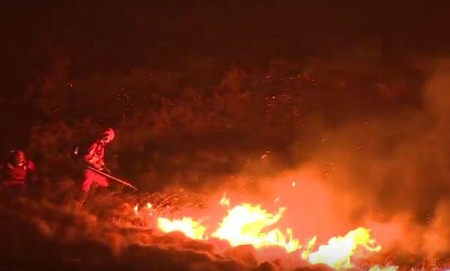Apokalipsa w Wielkiej Brytanii. Strażacy walczą z ogromnymi pożarami