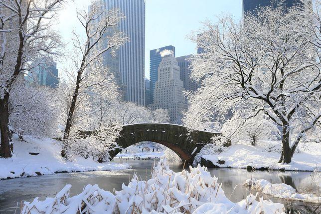 Central Park, zdjecie ilustracyjne