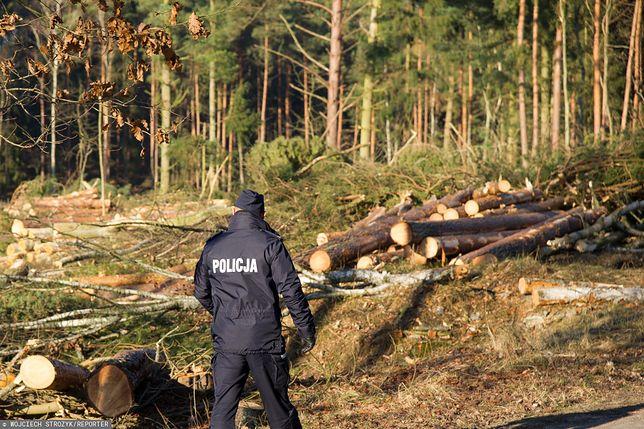 Środa Wielkopolska. Znaleziono ciało policjantki i jej 9-letniego syna. Sprawę bada prokuratura