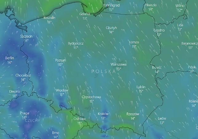 Pogoda w Polsce. IMGW ostrzega przed mgłami i silnym wiatrem