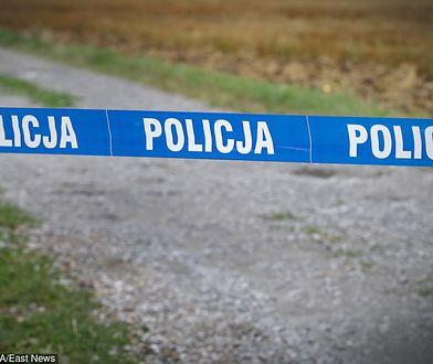 Ciało 29-letniej Pauliny K. znaleziono w lesie
