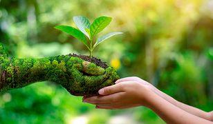 Światowy Dzień Ziemi. Kiedy wypada i jak go obchodzić?