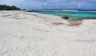Na należącej do Vanuatu wyspie Efate na Oceanie Spokojnym znaleziono zwłoki filipińskiego marynarza