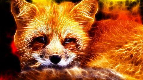Firefox będzie wymagał jeszcze mniej pamięci operacyjnej