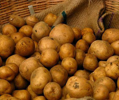 Kupujemy ziemniaki na zimę. Praktyczny poradnik