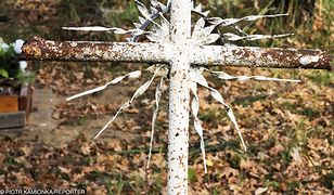 Zarząd Dzielnicy Białołęka poprosił, aby zagadkę grobu wyjaśnili eksperci Instytutu Pamięci Narodowej