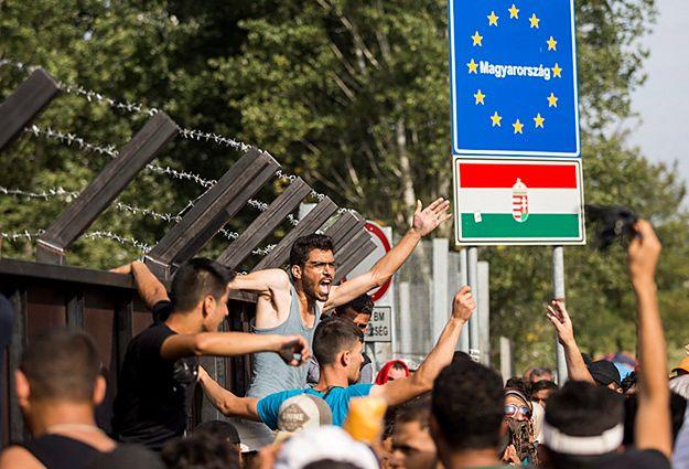 """Premier Serbii wzywa UE, by zareagowała na """"brutalne"""" zachowanie Węgier"""