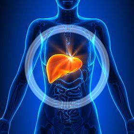 Liście boldo - naturalny lek na wątrobę