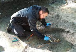 Nowe odkrycie na Westerplatte. Pierwsze poszukiwania od 56 lat