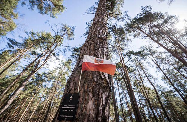 Miejscem masowego pochówku ofiar zbrodni katyńskiej jest las pod Smoleńskiem