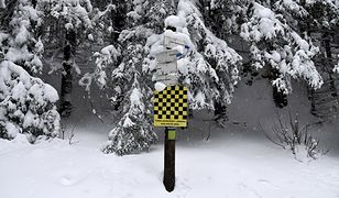 """Pogoda. Zima opuści nas na dobre. Ostatnie """"epizody"""" śniegowe"""