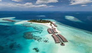 Turystka przywiozła z Malediwów ponad 1,5 kg rafy koralowej. Winę zrzuca na dzieci