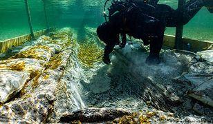 Znaleziono łódź sprzed 4 tys. lat. To archeologiczna sensacja