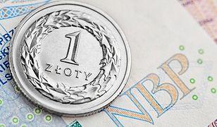 Wybory w USA i plany rządu PiS uderzą w złotego? To może być gorąca jesień dla naszej waluty